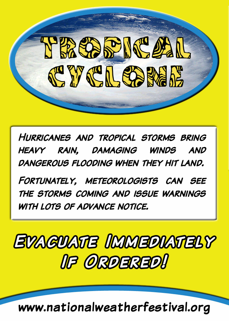 Tropical Cyclone card back
