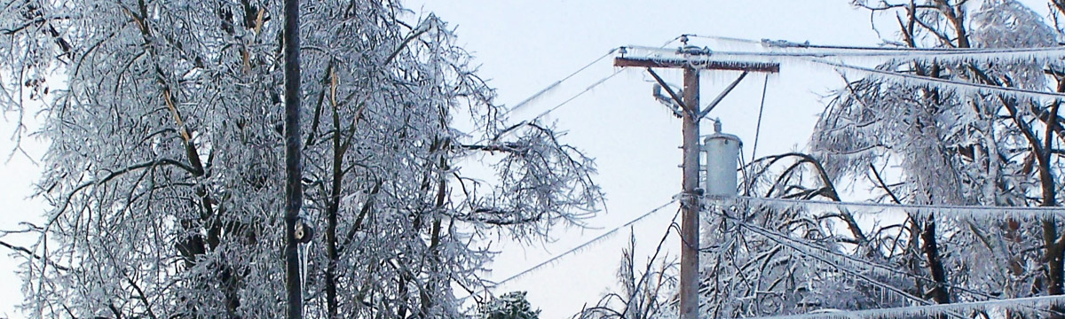 Ice buildup on trees and power lines